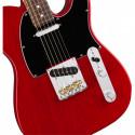 Fender American Professional Telecaster Ash RW CRT