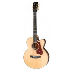 Guitarra eletroacústica Gibson Parlor Rosewood AG 2018