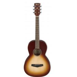 Guitarra acústica Ibanez PN18 ONB