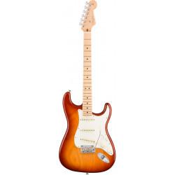 Fender American Professional Stratocaster ASH MN Sienna Sunburst